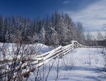 Winter fence. On an old farm in Alberta Royalty Free Stock Image