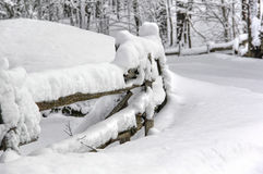 Winter fence coolnest stock image