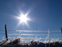 Winter Fence Line Royalty Free Stock Photography