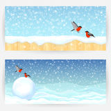 Winter festive backgrounds Stock Image