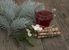 Winter festive card, tea, fir-tree branch, cookies and flower Royalty Free Stock Photo