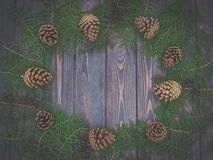 Winter festive decorations. Christmas card with fir cones Stock Images