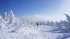 Winter on the Fichtelberg Stock Images