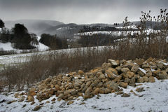 Winter field. Scene in Switzerland stock image