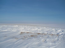 Winter field. Winter snow-covered white field Stock Image