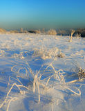 Winter field. The image of a winter field Stock Photos