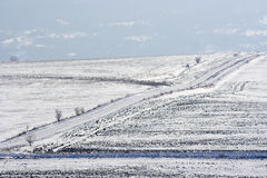 Winter field. View of winter field and snowy road Stock Photography