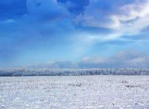 Winter field Lizenzfreies Stockbild