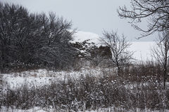 Winter. Field covered with deep snow Royalty Free Stock Photography