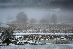Winter field in fog Royalty Free Stock Photo