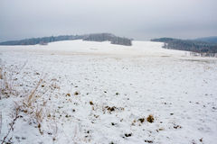 Winter field in hills Stock Photography