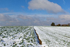 Winter field landscape royalty free stock photography