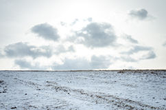 Winter field scene Royalty Free Stock Photography