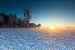 Winter field at sunrise Royalty Free Stock Image