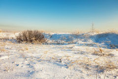 Winter field under Royalty Free Stock Images