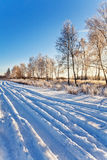 Winter field under Royalty Free Stock Image