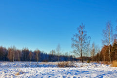 Winter field under Stock Photo
