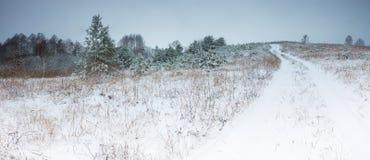 Winter field under cloudy gray sky Stock Photo