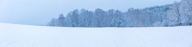 Winter field under cloudy gray sky Royalty Free Stock Image