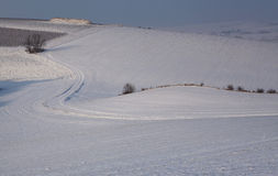 Winter fields Stock Photos