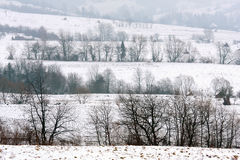 Winter fields Royalty Free Stock Photography