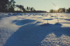 Winter fields sunset with snow. And with shadows from snow drifts. Colorful landscape of sunset in winter Stock Images