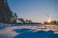 Winter fields sunset with snow. And with shadows from snow drifts. Colorful landscape of sunset in winter Royalty Free Stock Photos