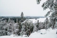 Winter in Finnland bedeckte im Schnee stockbilder