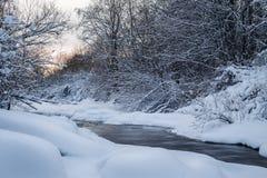 Winter in Finnland bedeckte im Schnee lizenzfreie stockfotos