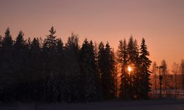 Winter in Finnland, Sonnenuntergang, Bäume, Stockfoto