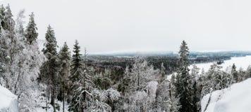Winter in Finnland-Standpunkt vom zweiten Höhepunkt in Süd-Finnland stockfotos