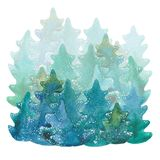 Winter fir forest. Watercolor illustration  on white background Stock Photo