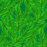 Winter Fir Green Branches Seamless Pattern. Christmas Background Stock Photography