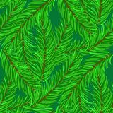 Winter Fir Green Branches Seamless Pattern. Christmas Background Royalty Free Stock Photos