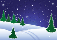 Winter fir tree forest at night. Vector illustration of winter fir tree forest at night Royalty Free Stock Photography