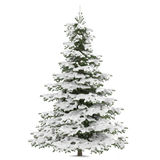 Winter fir-tree on snow isolated. At the white background Royalty Free Stock Images