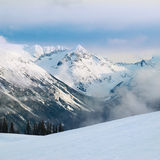 Winter fir trees in mountains Royalty Free Stock Photo