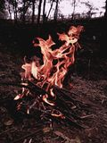 Winter fire. Sitting around fire to smoke weed Royalty Free Stock Photography
