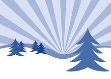 Winter firs illustration. An illustration of winter firs. Can be used as a Christmas card background Stock Photography