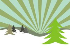 Winter firs illustration. An illustration of winter firs. Can be used as a Christmas card background Stock Photo