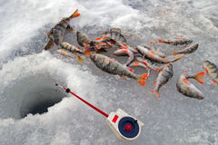 Winter fishing Stock Photos