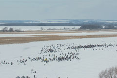 Winter fishing - crowd of People at ice frozen river Royalty Free Stock Image