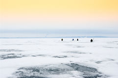 Winter fishing Stock Photography