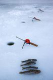 Winter fishing on ice Stock Image