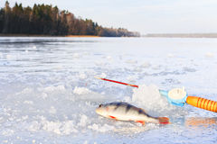Winter fishing on ice Royalty Free Stock Image
