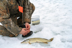 Winter fishing on ice Royalty Free Stock Photos