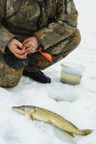 Winter fishing on ice Royalty Free Stock Image