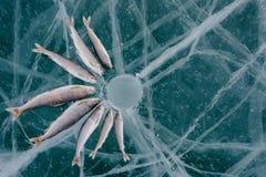 Winter fishing on the lake. Stock Photos