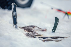 Winter fishing rod and knives Stock Photos