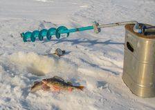 Winter fishing in the Rybinsk reservoir of the Yaroslavl region Stock Photography